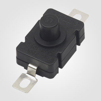 PBS101A Push Button Switch