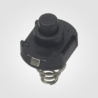PBS101FT-12 Momentary normally open push button switch