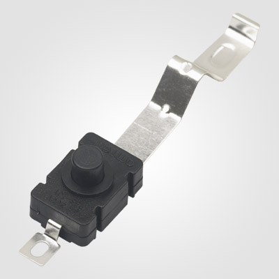 PBS101G1 Push Button Switch