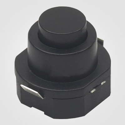 PBS101VW Torch light push button switch