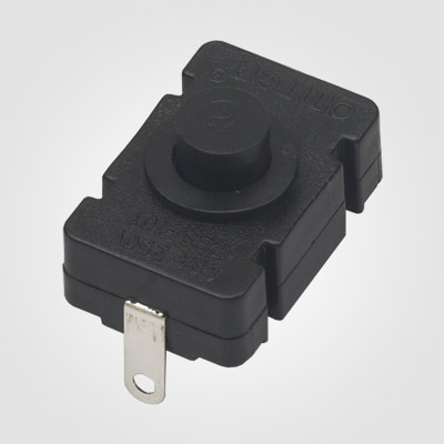 PBS101X Torch Push Button Switch